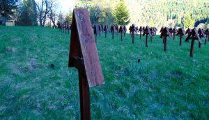 Az elesett magyar katonáknak állított keresztekből 23 darabnak nyoma veszett