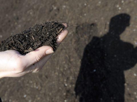 Komposztálhatják az elhunyt embereket az Egyesült Államokban