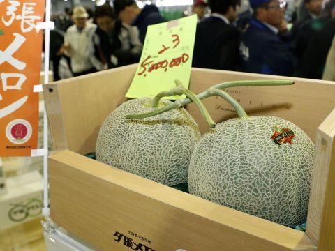 Milliókért kelt el egy pár sárgadinnye Japánban