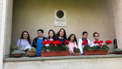 Ignácz Rózsa-verseny