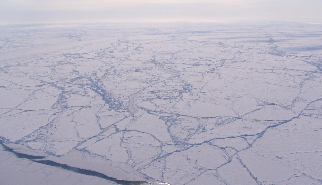 Vészesen zsugorodik az Északi-sarkot borító jégtakaró