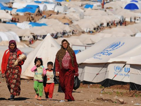 Rekordszámú menedékkérőt regisztrálhattak tavaly a világban