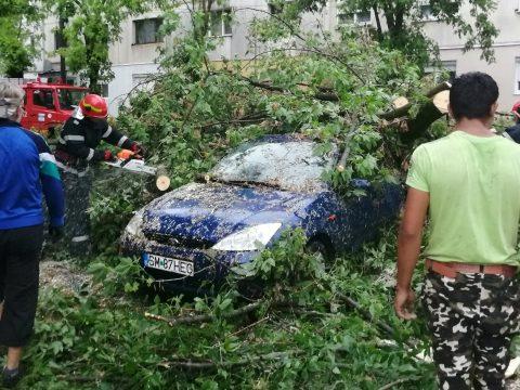 Országszerte több száz fát döntött ki, tetőket rongált meg a csütörtöki vihar
