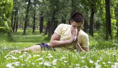 Az enyhe időjárás miatt korábban kezdődik a pollenszezon