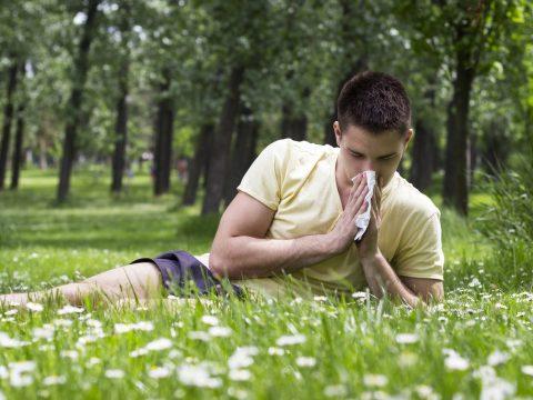 Allergológus: a melegedés miatt több az allergiás megbetegedések száma