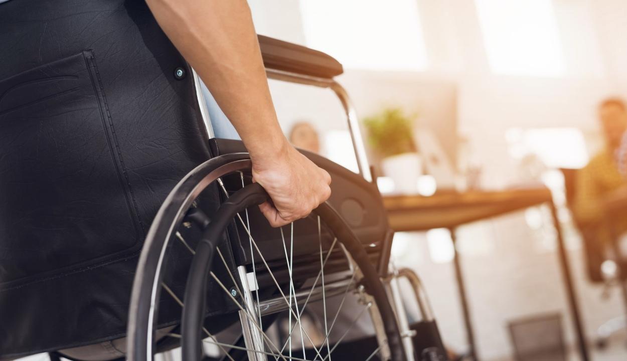 A fogyatékkal élőknek járó ingyenjegyeket a jogaikat védő civil szervezetek is átvehetik