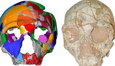 A modern ember 150 ezer évvel korábban érkezhetett Európába az eddig véltnél