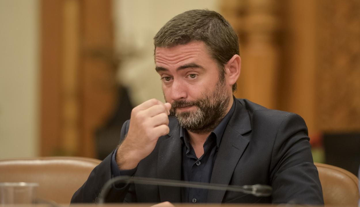 Függetlenként indul az elnökválasztáson Liviu Pleşoianu PSD-s képviselő