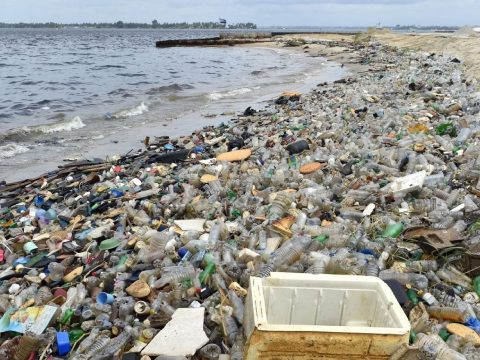 Európai Bizottság: EU-s kampány keretében tisztítják meg a világ tengerparti strandjait
