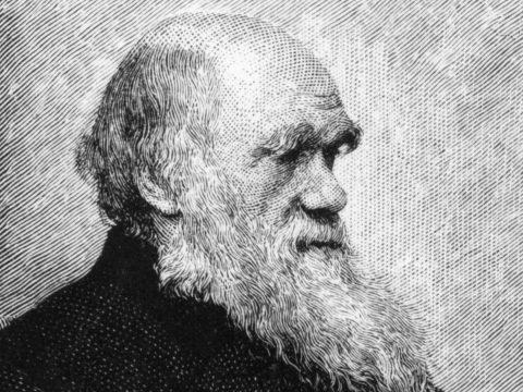 Egy orosz pap szerint, Darwin visszavonta tanait