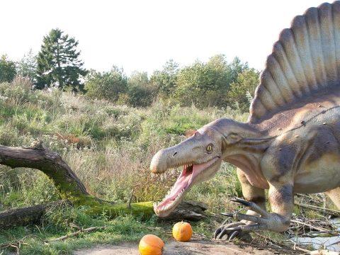 Új dinófajt találtak