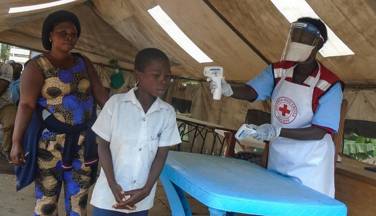 Két ebolaellenes gyógyszert talált hatékonynak a WHO
