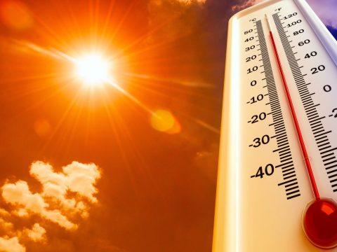 Kánikula lesz a következő napokban, a jövő héttől enyhén mérséklődik a meleg