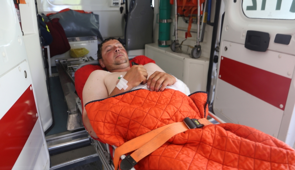 Medve támadt egy juhászra a Hargita megyei Csíkszentimre közelében