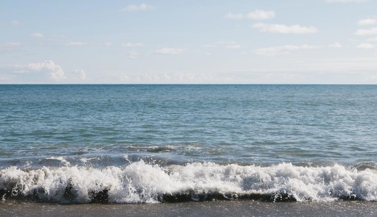 Nem jeleskedik az EU a tengerek védelmében