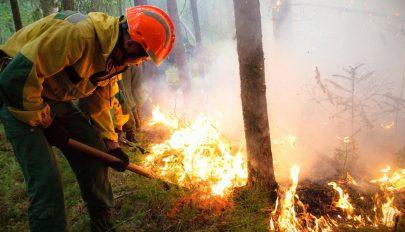Eloltották az összes orosz erdőtüzet