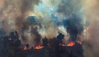 Jelentősen csökkentek szeptemberben az amazonasi erdőtüzek
