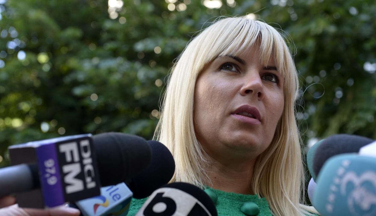 Nyolc év letöltendő börtönbüntetésre ítélték Elena Udreát