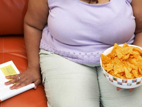 Nem az akaraterő hiánya okozza az elhízást egy pszichológiai kutatás szerint