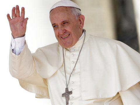 Az erdőpusztítás globális veszélyeire figyelmeztetett Ferenc pápa