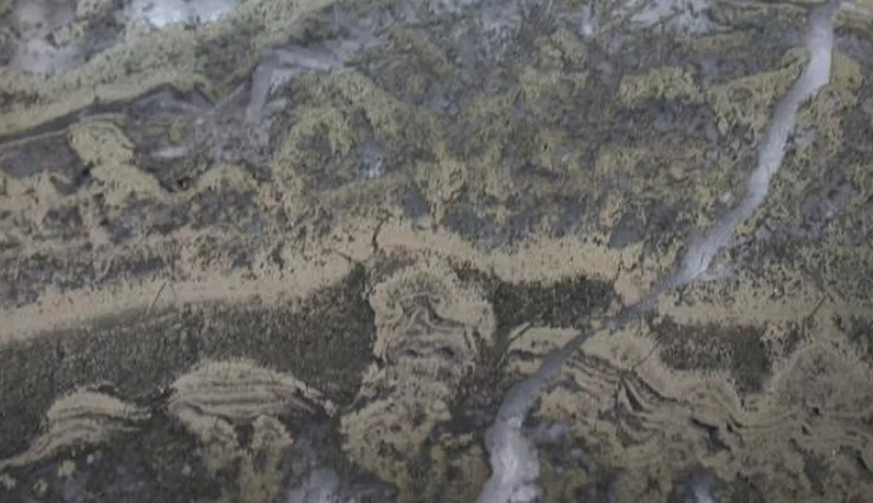 A földi élet legkorábbi bizonyítékára bukkantak