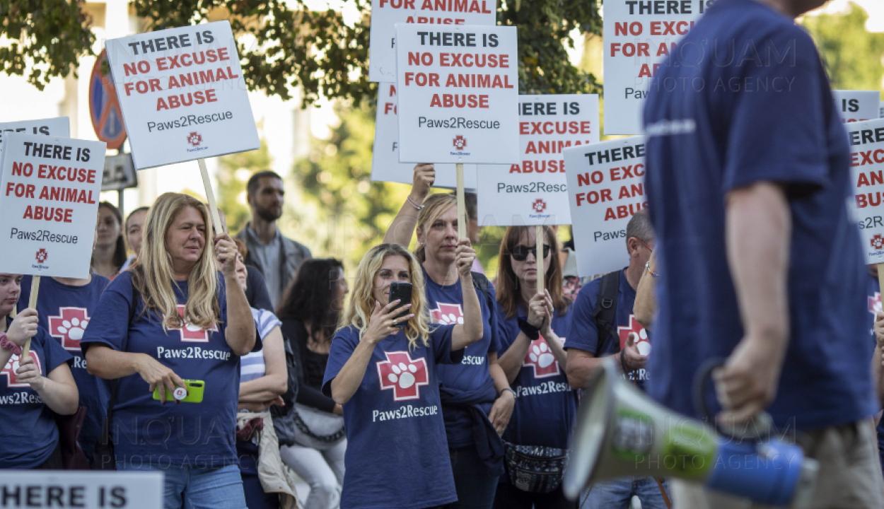 Több százan vettek részt az állatok jogainak védelmében szervezett bukaresti felvonuláson