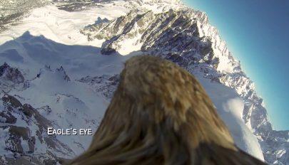 Egy rétisas nézőpontjából figyelhetjük meg az Alpok olvadó gleccsereit