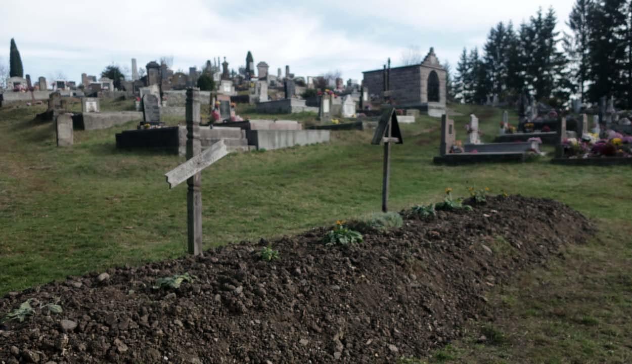 Exhumálták a német katonákat