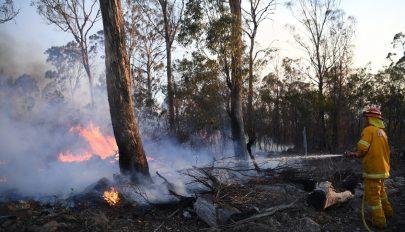 Közel nyolc hónap után minden tüzet eloltottak Új-Dél-Walesben