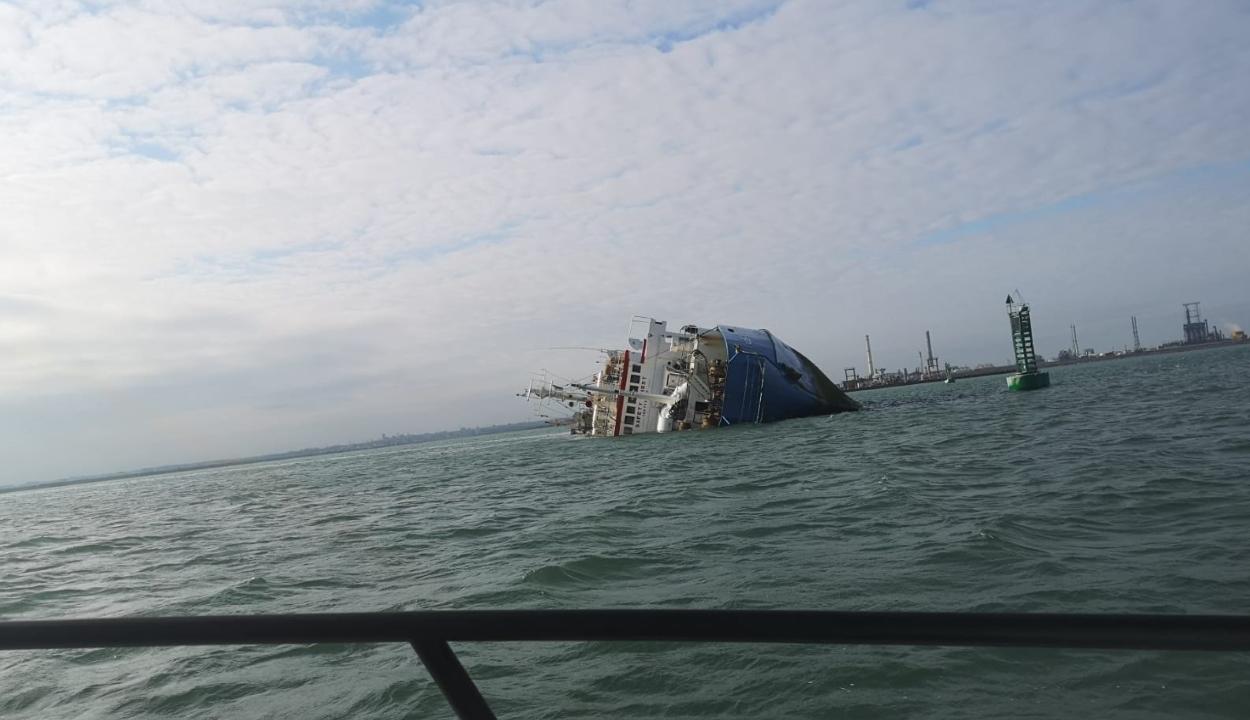 FRISSÍTVE: Több mint 14 ezer juhval a rakterében süllyedt el egy hajó a midiai kikötőben