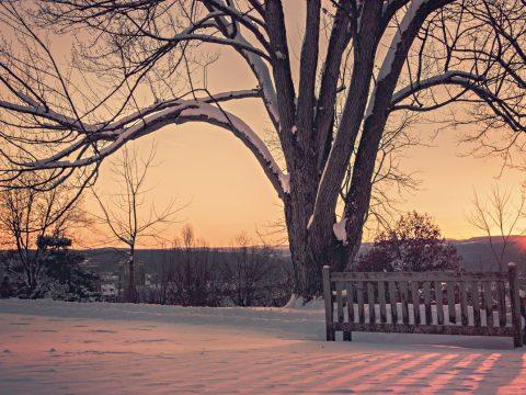 ANM: enyhébb lesz a tél, mint általában szokott