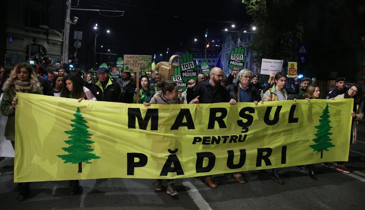A törvénytelen erdőirtások és az erdészek elleni erőszak miatt tüntettek Bukarestben