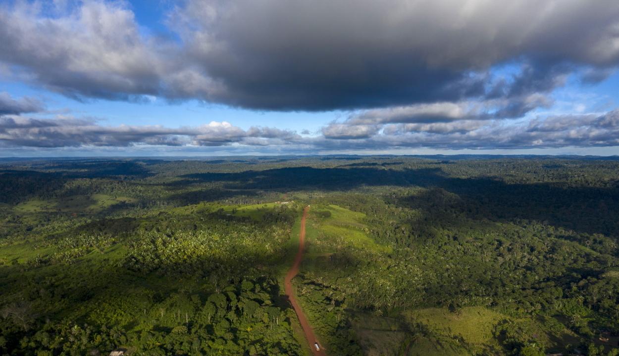 Egy hónap után mentettek ki egy kiránduló nőt három gyerekével az amazonasi őserdőből