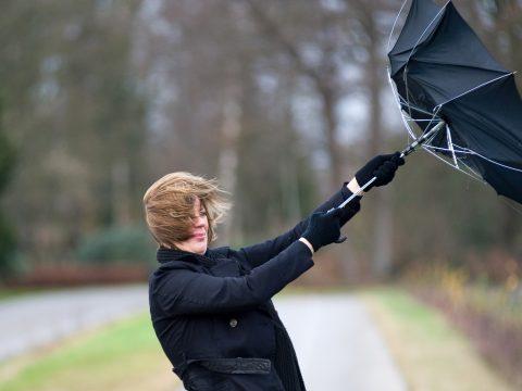 Erős szél lesz szombaton az ország nagy részében