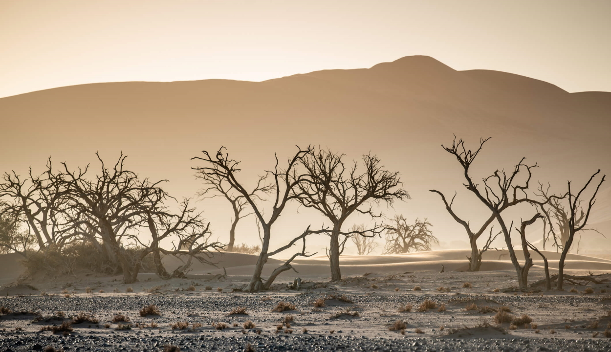 Leginkább az emberi tevékenység okozza a globális felmelegedést egy tanulmány szerint