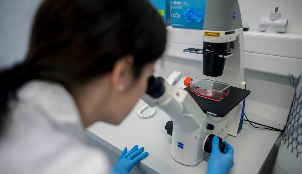 Először sikerült izolálni a koronavírust Magyarországon