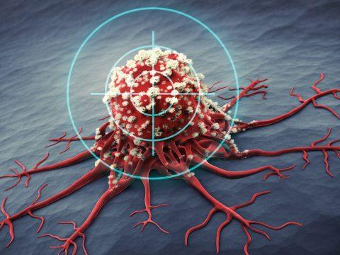 Nemsokára a saját immunrendszerünk is legyőzheti a rákot