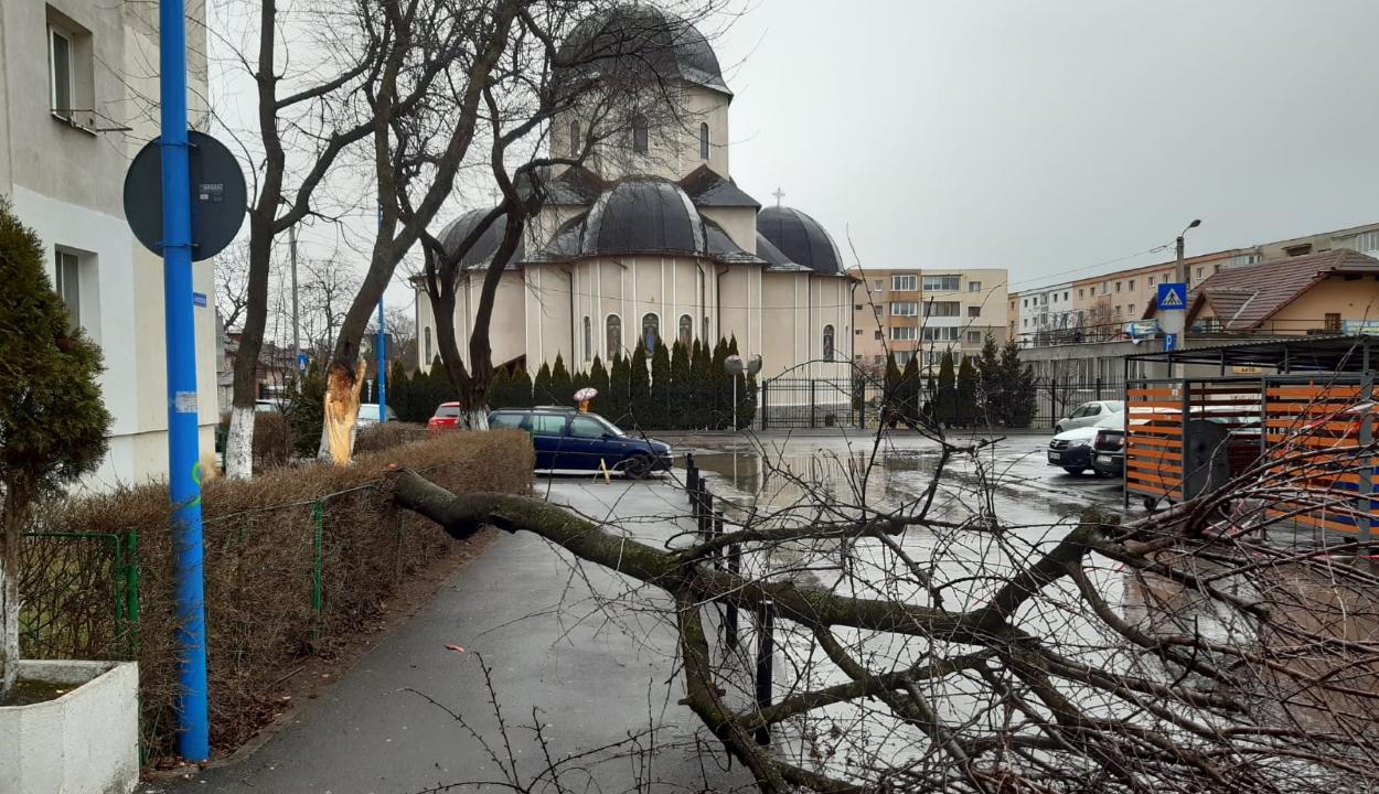 Fákat, reklámpannót döntött ki az erős szél Brassó és Kovászna megyében
