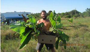 2005 tavaszán indult szerencsét próbálni Székelyföldről Amerikába Fülöp Róbert, ismertebb nevén Székely Vegán
