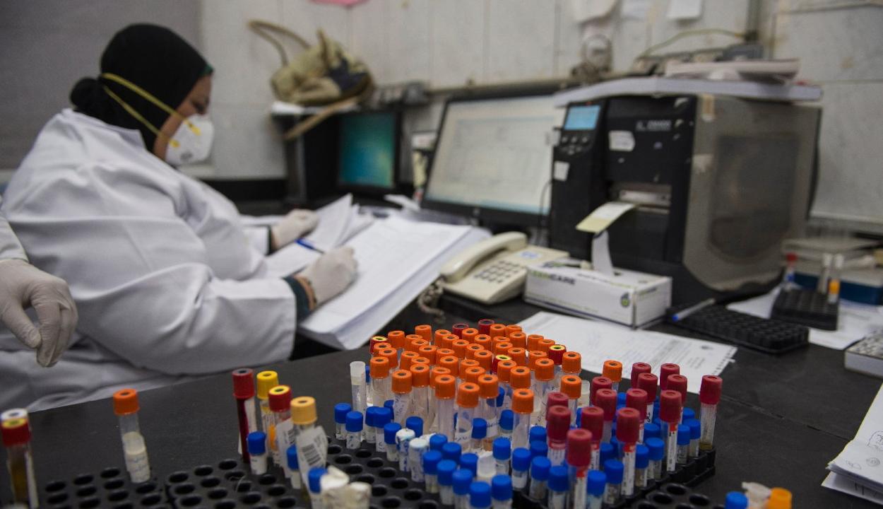 Egy amerikai immunológus szerint megvan a koronavírus kezelésének lehetséges ellenszere
