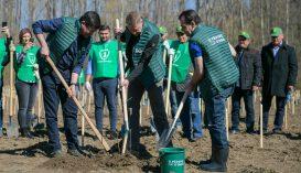 Iohannis az illegális erdőirtás felszámolása mellett foglalt állást a környezetvédelmi világnapon