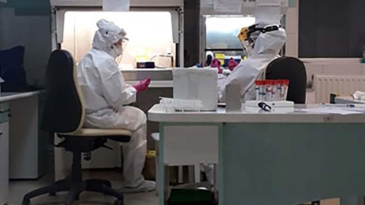Virológiai kutatások a Pro-Vitamnál