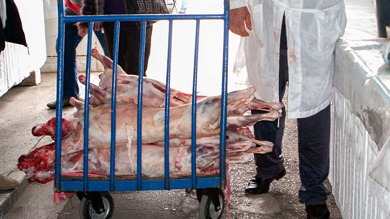 A bárányhús vásárlásának feltételeire figyelmeztet a rendőrség