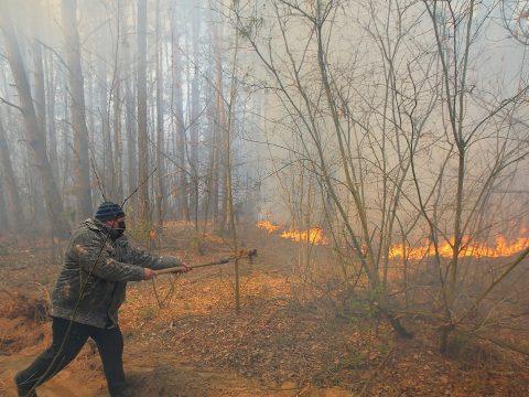 Ismét kiújultak a tüzek a csernobili zónában