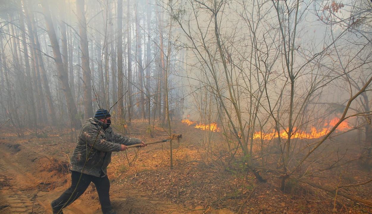Teljesen eloltották a tüzeket a Csernobilban