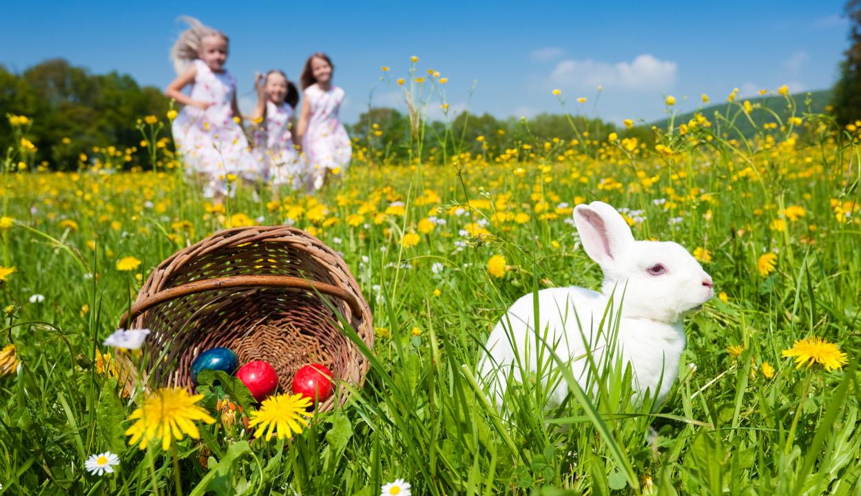 Húsvéti fejtörő: megtalálja a szívet a húsvéti tojáson?