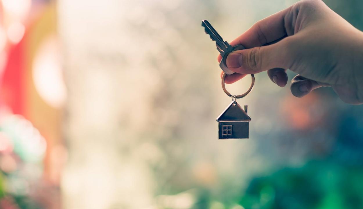Az EP európai alapjoggá tenné a megfelelő lakhatást