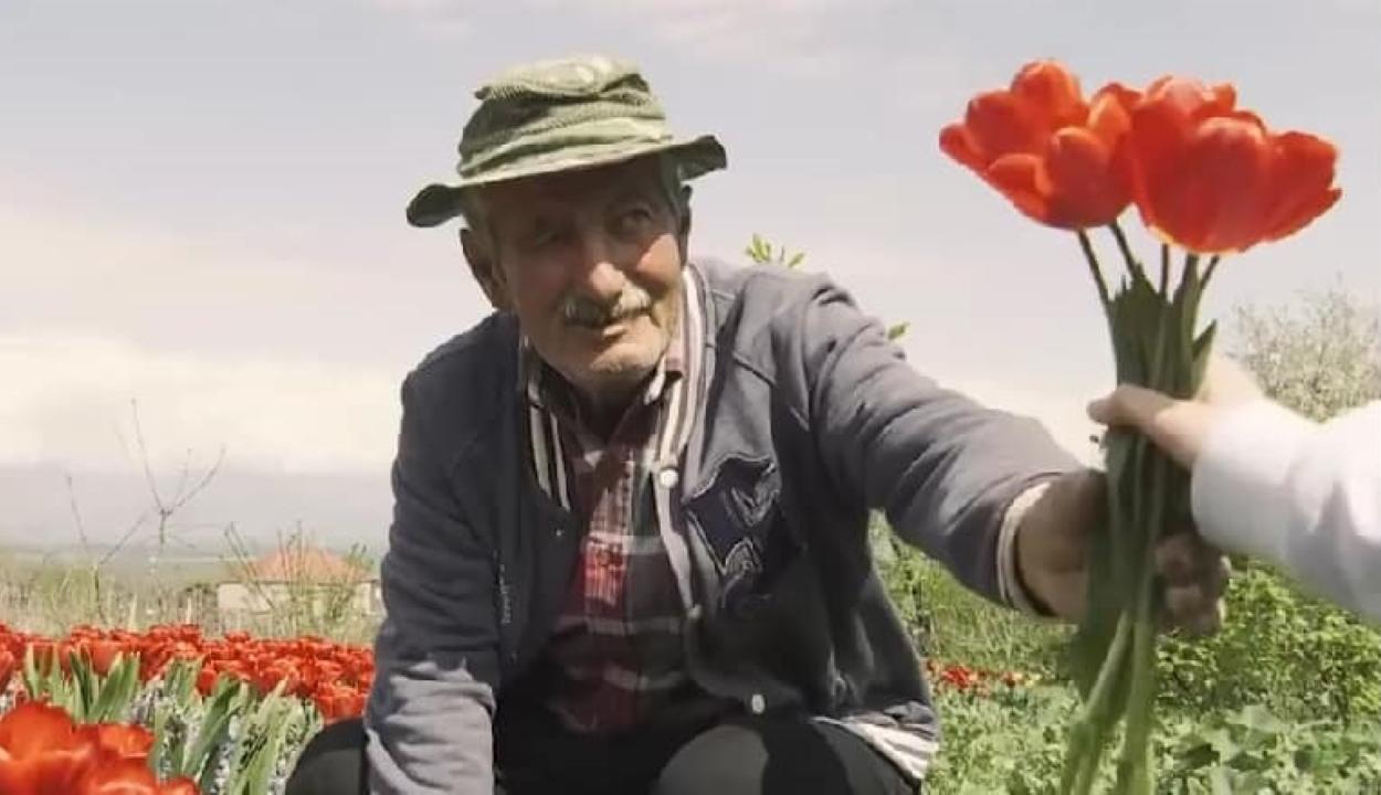 Megmenekült a csődtől egy idős virágárus, miután megvették az összes virágát az orvosoknak