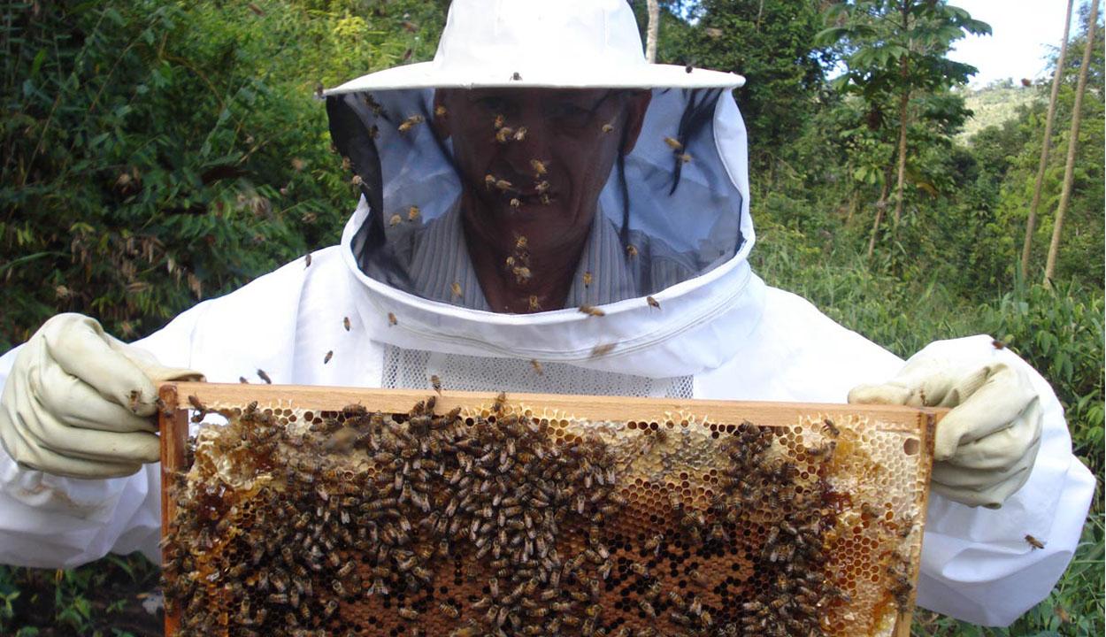 Ajándék a méhészeknek