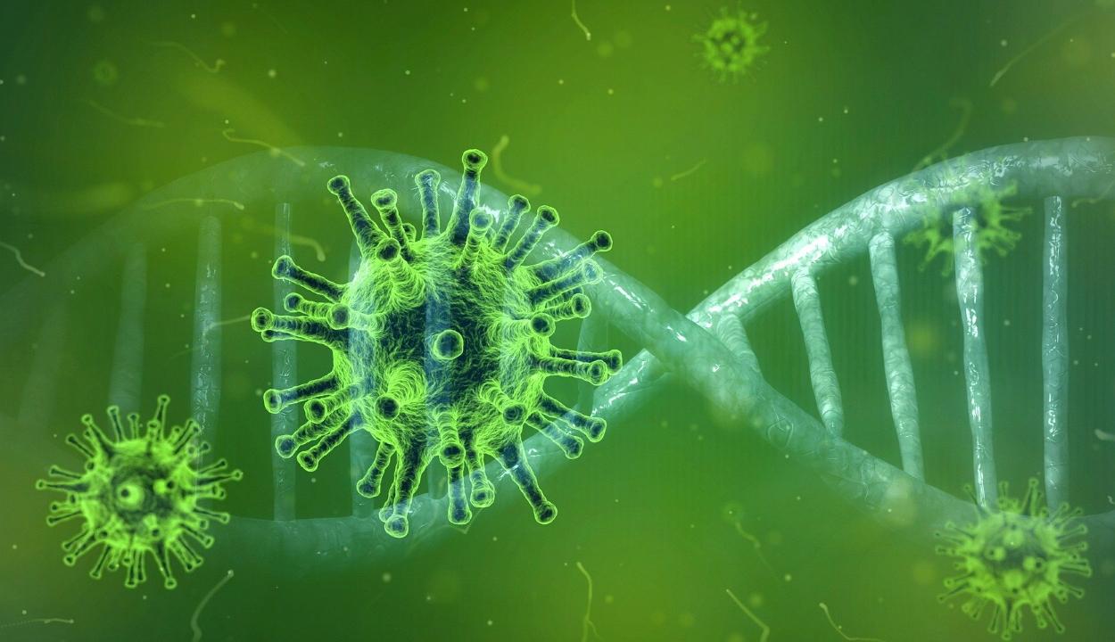 2830 új koronavírusos megbetegedést jelentettek 17.491 teszt feldolgozása nyomán